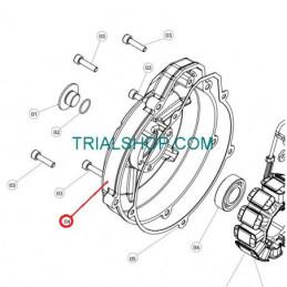 Coperchio Frizione TRS One '16'18