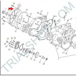 coperchio frizione TR11