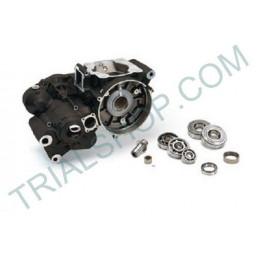 Carter Completo Beta Evo Factory 250 / 300cc '15- '19