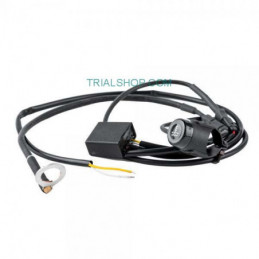 Sensore di Temperatura con Allarme Luce per Motore – Jitsie –