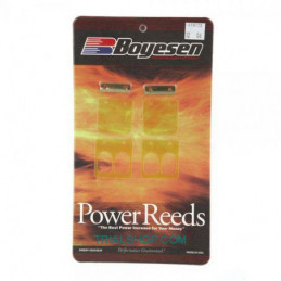 Lamelle Power 6TR123 Gas Gas – Boyesen –