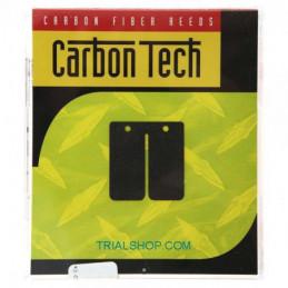 Lamelle Carbon Tech CTT123 Gas Gas – Boyesen –