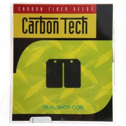 Lamelle Carbon Tech CTT132 Scorpa twenty, Sherco – Boyesen –